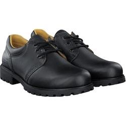 Panama Jack - Schnürschuhe in schwarz