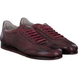 Fabi - Schnürschuhe in rot