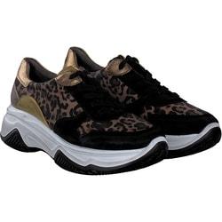 462eb3da7105ef Paul Green Sneaker