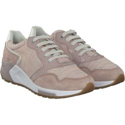 Geox - PHYTEAM in Rosa
